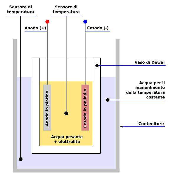 Modello Fleischmann-Pons