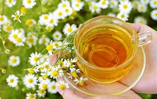 Camomilla, tazza e fiori