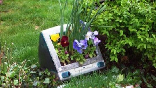 iMac come vaso di fiori