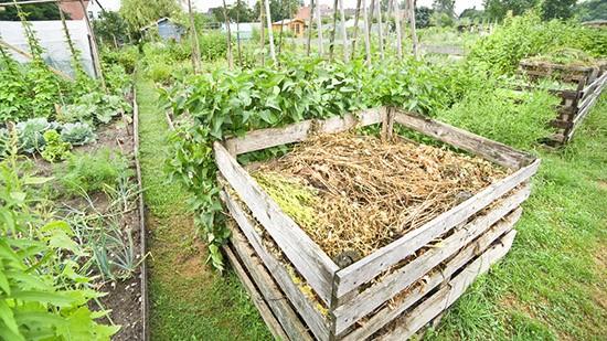 Compostiera fai da te come costruirla greenstyle for Compostiera da giardino