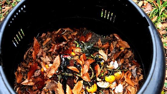 Compostiera a bidone