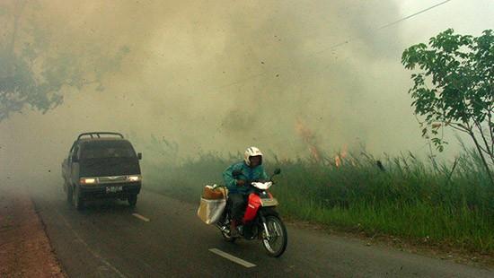 Incendio in Malesia