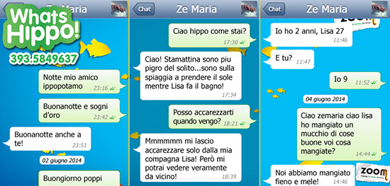 Ze Maria, Whatsapp