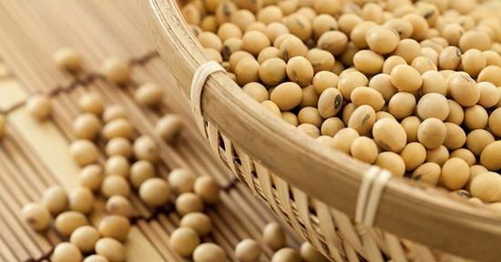 Il tofu è un prodotto derivato dalla soia.