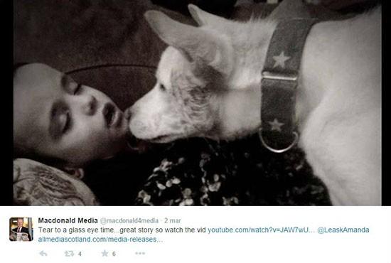 Cane e bambino autistico