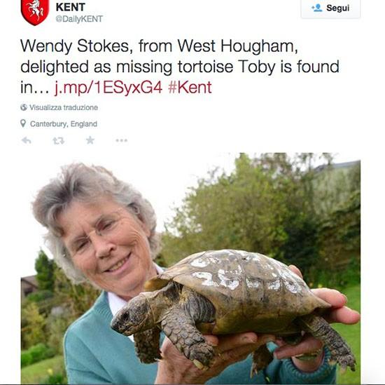Tartaruga ritrovata