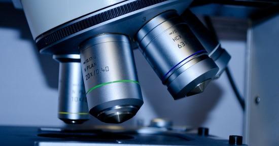 analisi del sangue: valori degli eritrociti