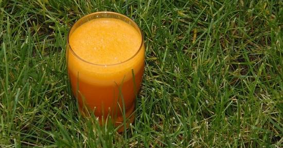Centrifuga di carote