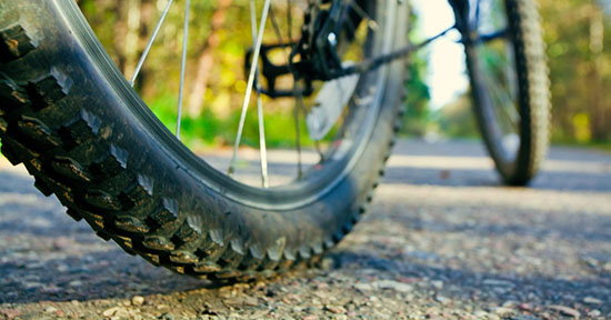 Ruota della bicicletta