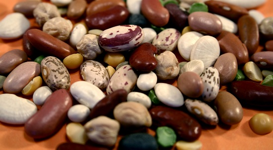 Close up view of a variety of dried beans