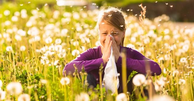 Bambini e allergie alle graminacee