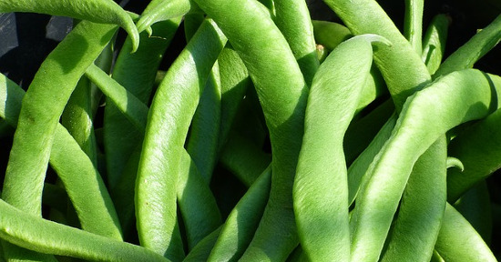 Cibi ricchi di Vitamina B9: acido folico nei Legumi