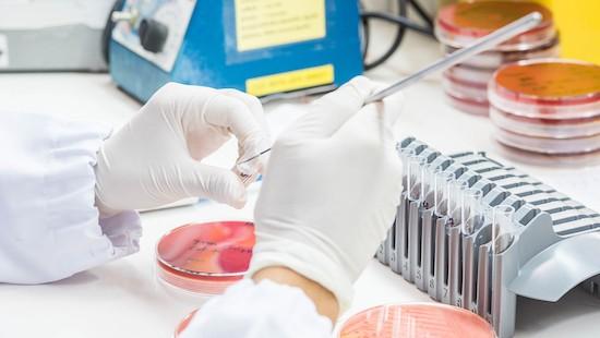 Ricerche di laboratorio, meningite