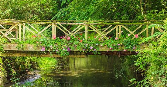 Ponte inglese