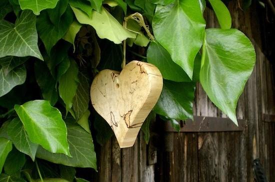 Cuore di legno e foglie di colore verde