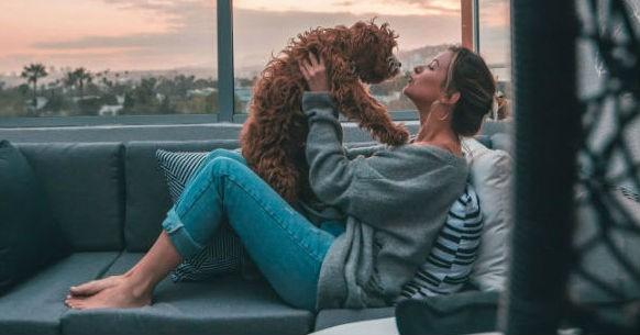 Cane e baci