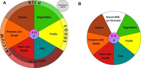 Dieta vegana per bambini e ragazzi