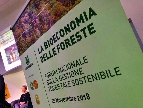 bioeconomia_foreste