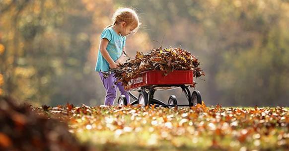 Bambina e foglie