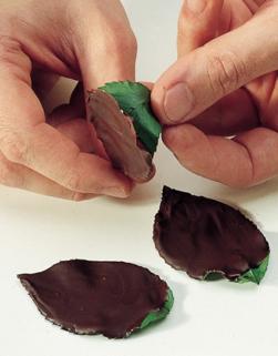 foglie cioccolato fondente
