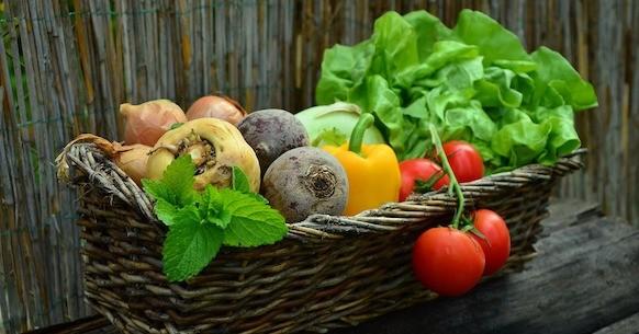 Insalata, verdure