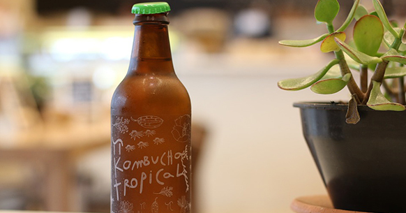 The kombucha