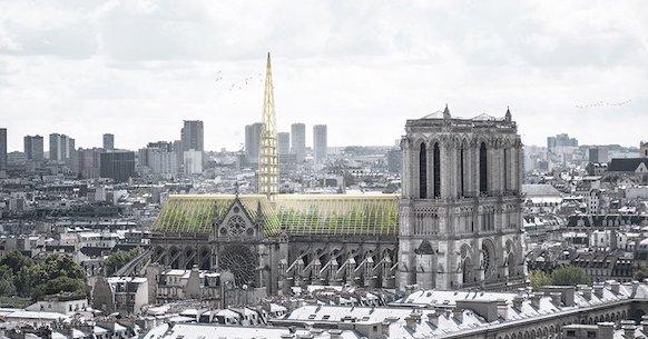 Notre Dame, serra green
