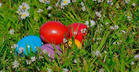 Rotolamento uova
