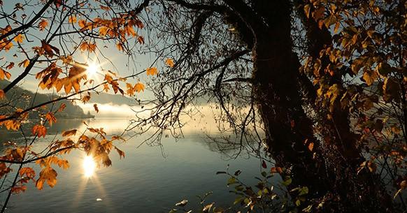 Sole e autunno