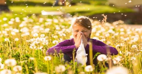 Allergia da parietaria: sintomi e picco stagionale