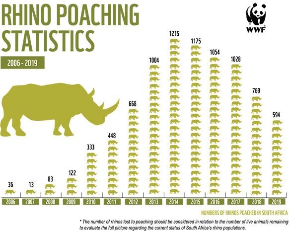 Bracconaggio di rinoceronti