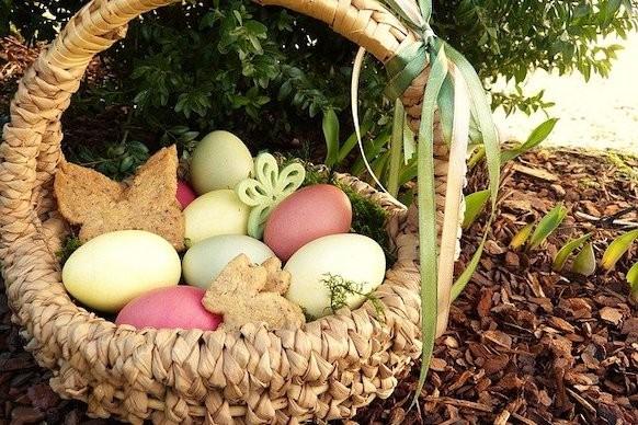 Uova di Pasqua nido biscotti
