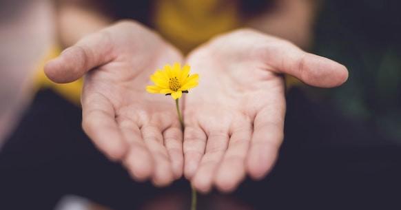 Mani fiore giallo