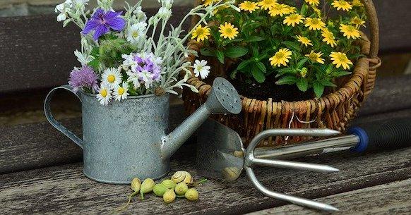 Attrezzi giardinaggio