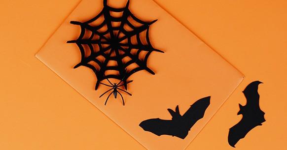 Ragnatela Halloween