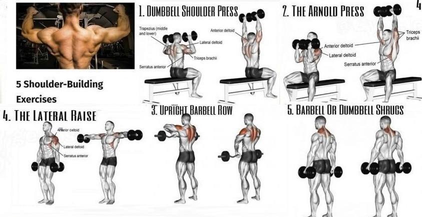 Esercizi spalle