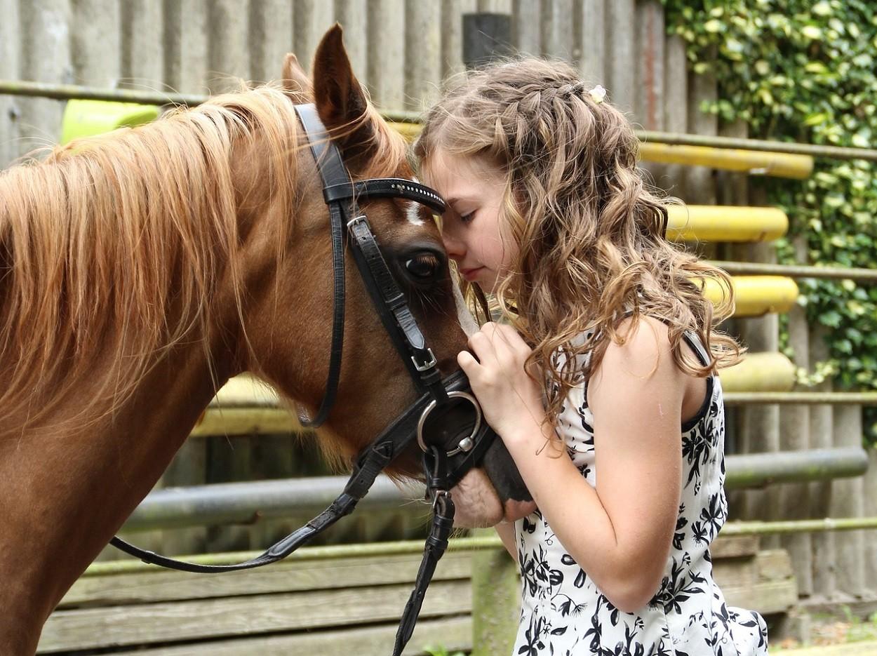 Interventi Assistiti Animali con cavallo