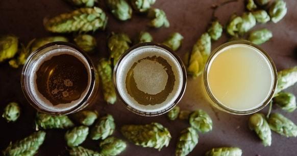 Properties hops, beer