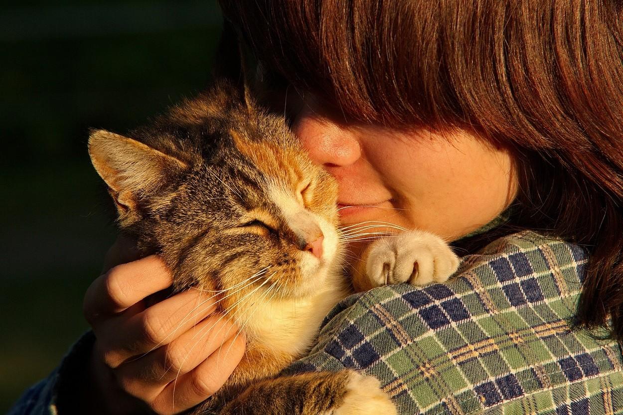 Pet Therapy col gatto