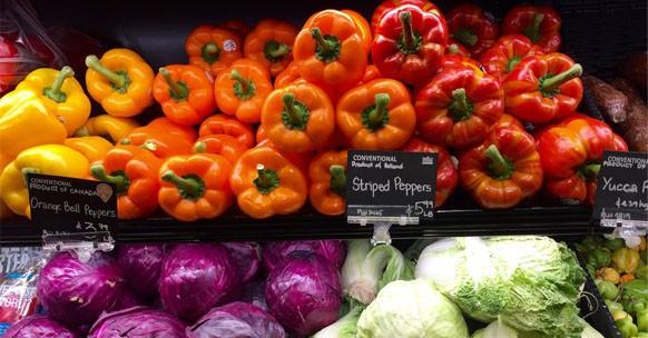 valori nutrizionali micronutrienti