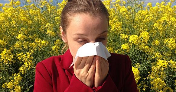 Allergia e vitamina C