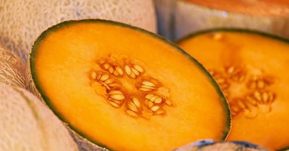 Melone, calendario orto